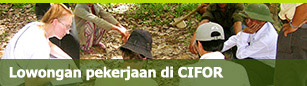 Job vacancies at CIFOR