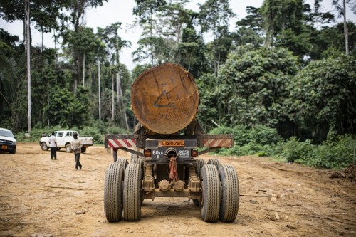 As part of Cameroon's formal logging sector, this concession in the south of the country must comply with sustainability requirements – yet the informal sector remains poorly regulated. Ollivier Girard/CIFOR.