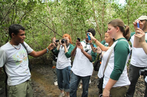 Youth ambassadors map the mangroves in Bahia, Brazil, by uploading photos and reports of different species of animals and plants they found. Qatar Foundation International