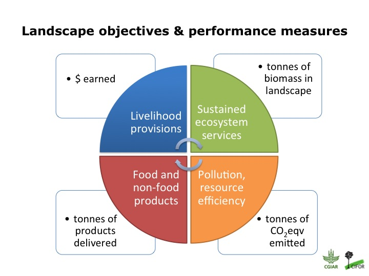 definition of sustainable development goals pdf