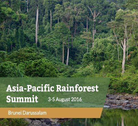 asia-pacific-rainforest-summit