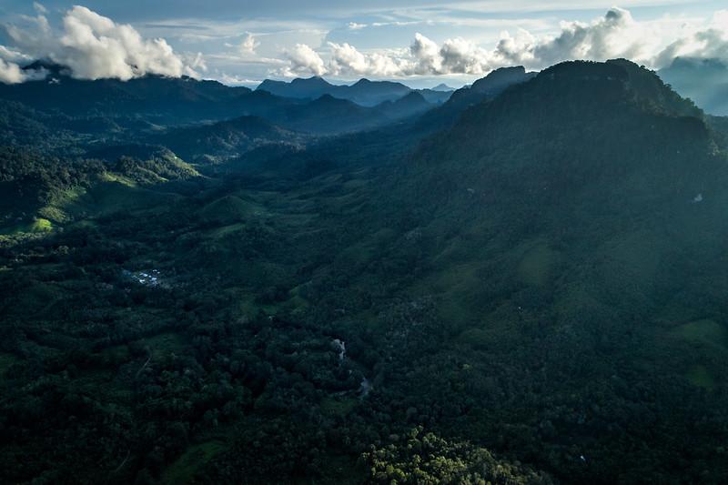Lebih Fokus Pada Ekologi Borneo