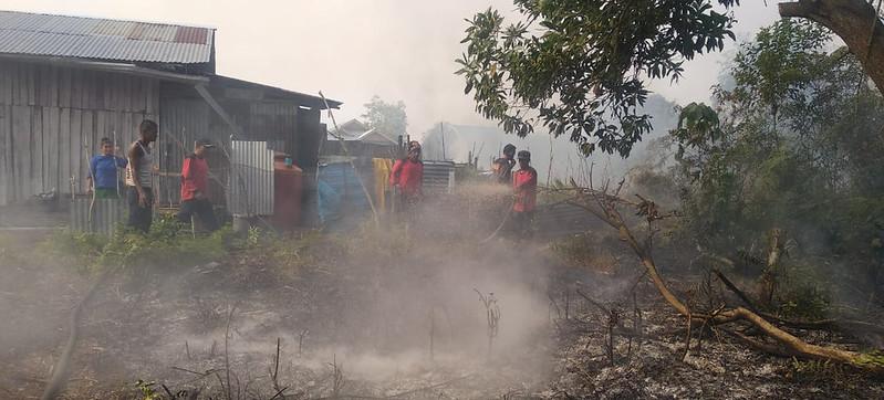 Bagaimana memaknai kebakaran hutan di Amazon dan Indonesia?