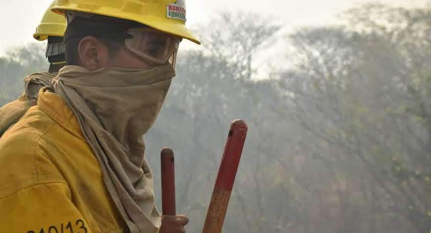 From the frontlines: Fighting Bolivia's forest fires