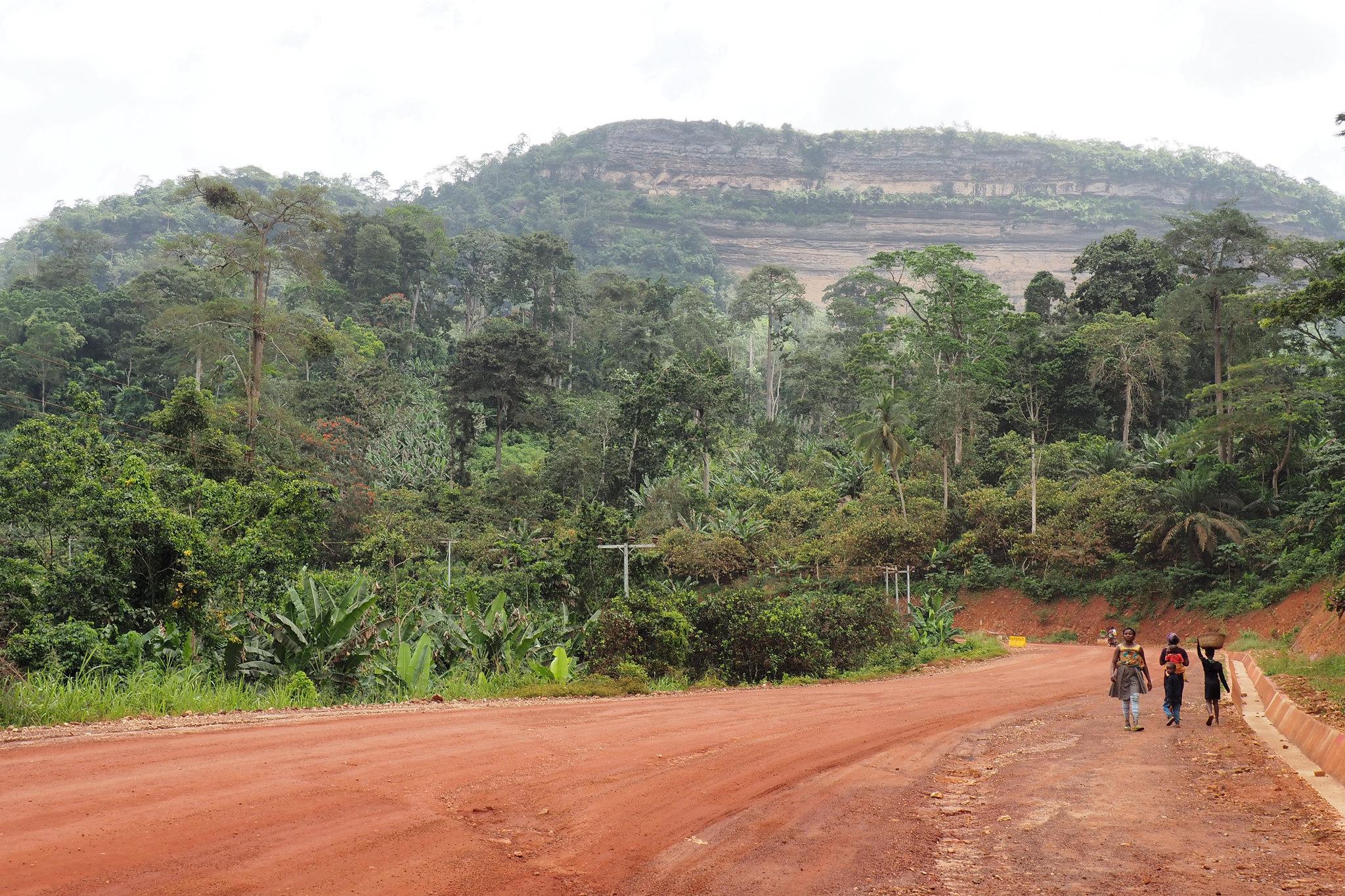 El intercambio de conocimientos en los paisajes tropicales es  clave para la resiliencia