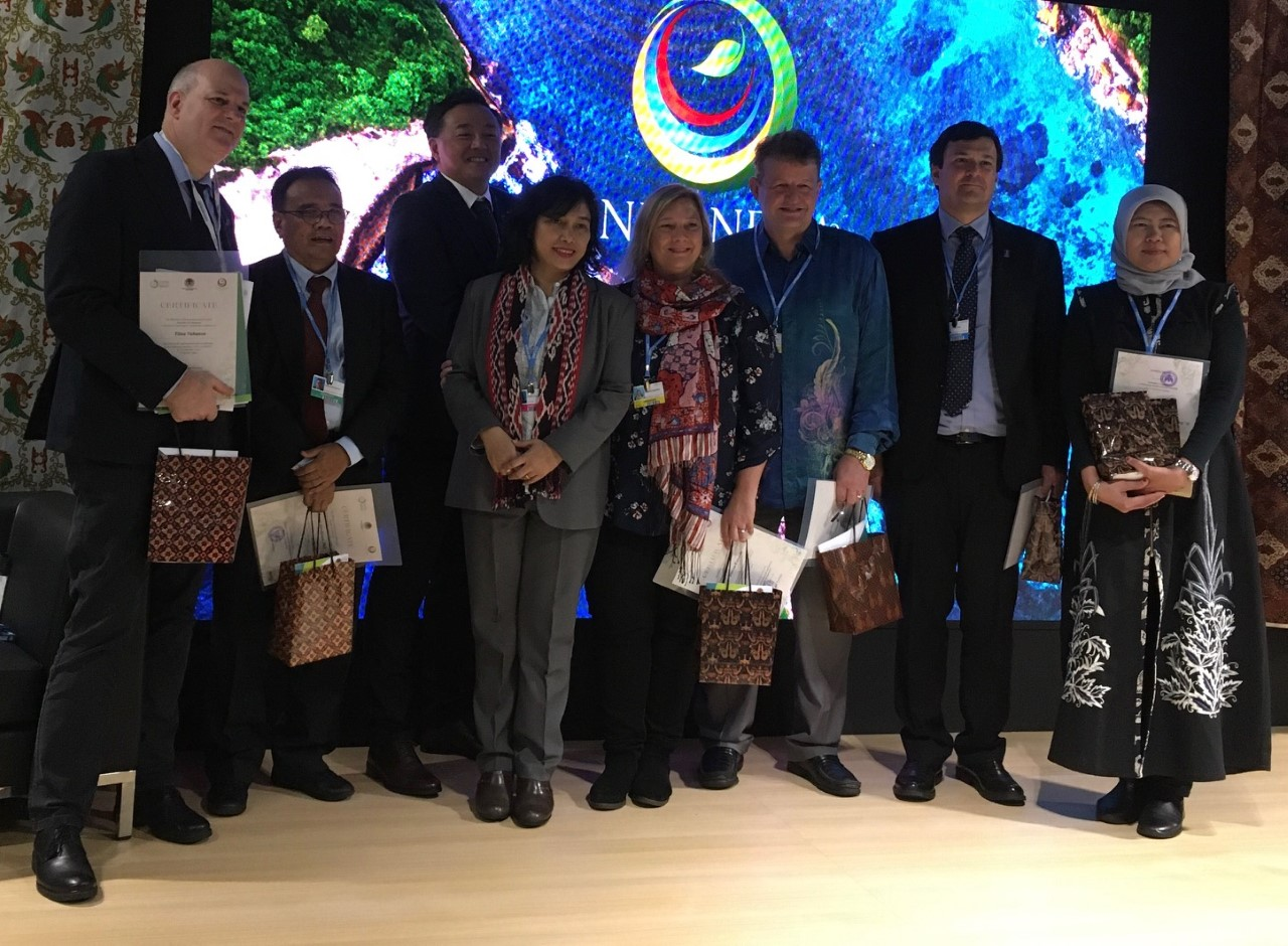Peatland potential untapped in Nationally Determined Contributions, COP 25 delegates say