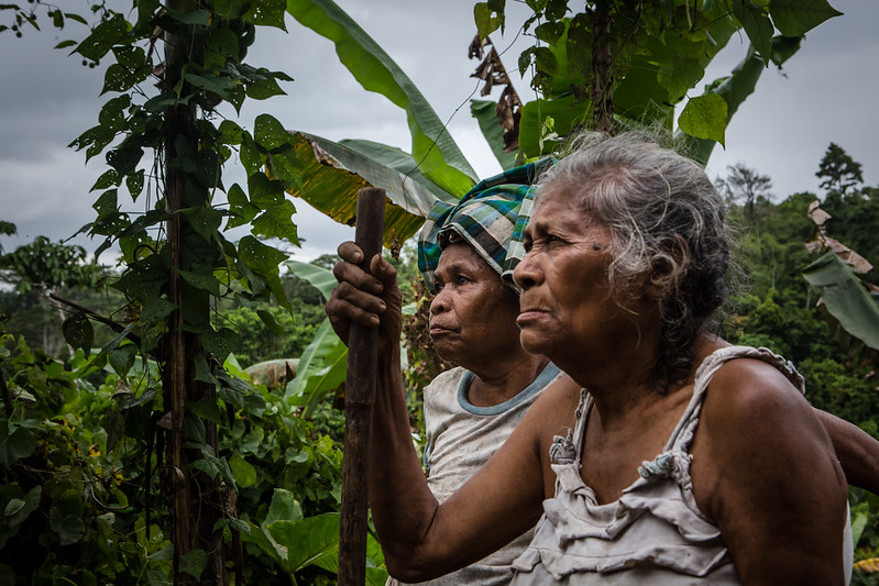 Forest tenure reforms in Indonesia could open door to greater gender equality