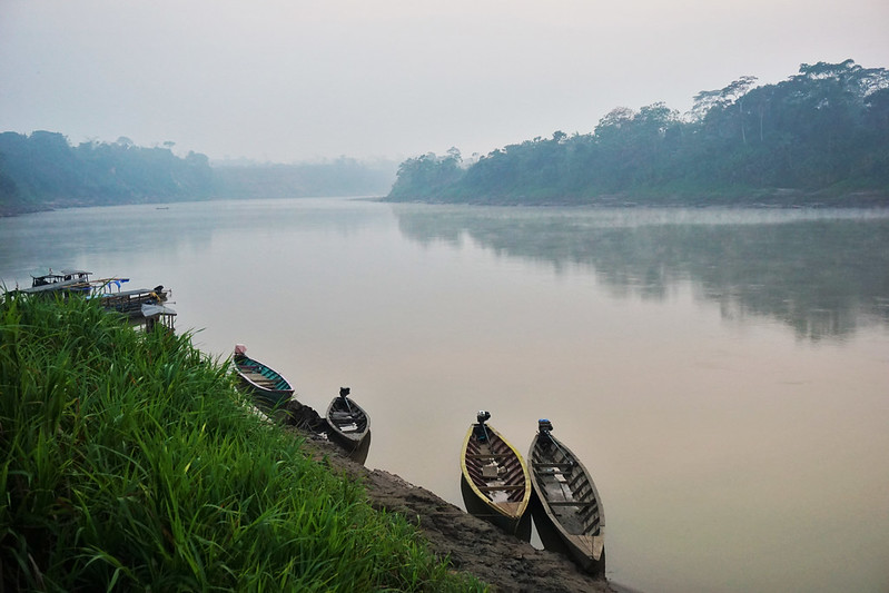 New institutional arrangements in climate mitigation programs show promise in Peruvian Amazon